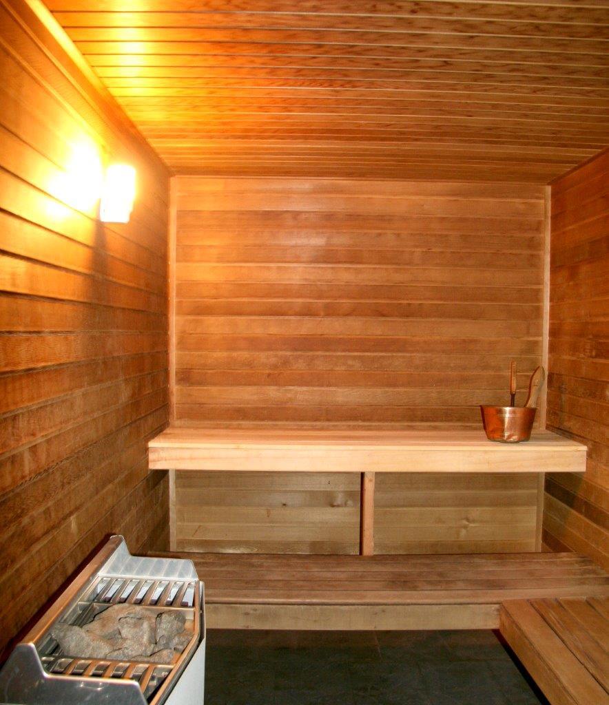 Quel Bois Utiliser Pour Un Sauna Blog Bearing Tech Sarl Lausanne